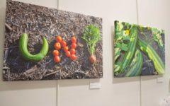 Artistic display at UNI goes green