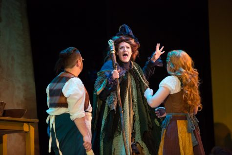 'Into the Woods' hits high notes