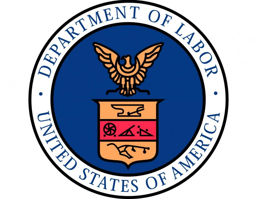 The+Department+of+Labor+is+responsible+for+the+federal+execution+of+the+Family+and+Medical+Leave+Act+of+1993.
