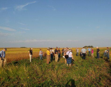 Tallgrass Prairie Center educates during field day