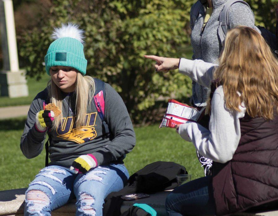 Fun and games brings students together at homecoming picnic