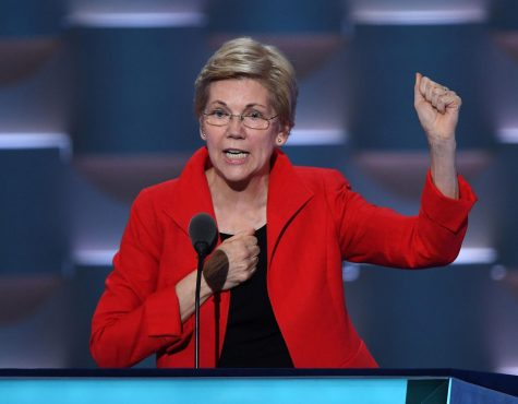 Elizabeth Warren's folly