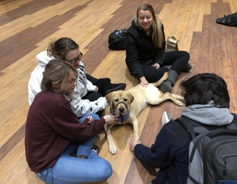 Wellness Services: De-Stress Days at UNI