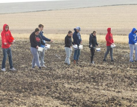 Students lend hand in prairie project
